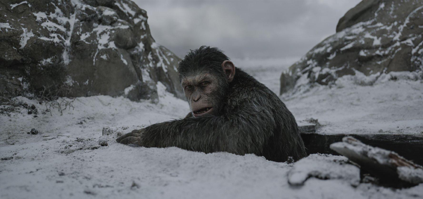 Os melhores filmes do ano (até agora)