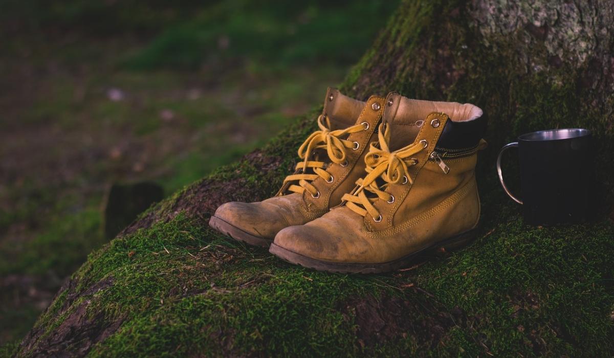 3 tipos de calçado imprescindíveis no dia a dia