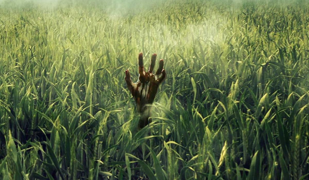 Obra de Stephen King adaptada a filme pela Netflix