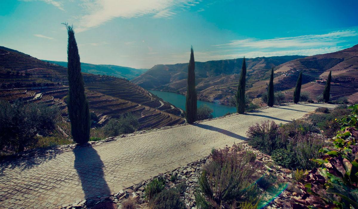 5 Quintas para fazer uma prova de vinhos no Alto Douro