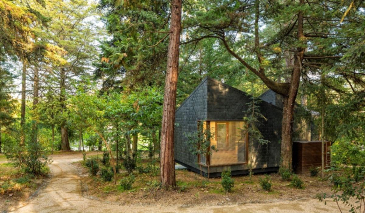 Durma numa casa de árvore na próxima escapadinha ao interior de Portugal