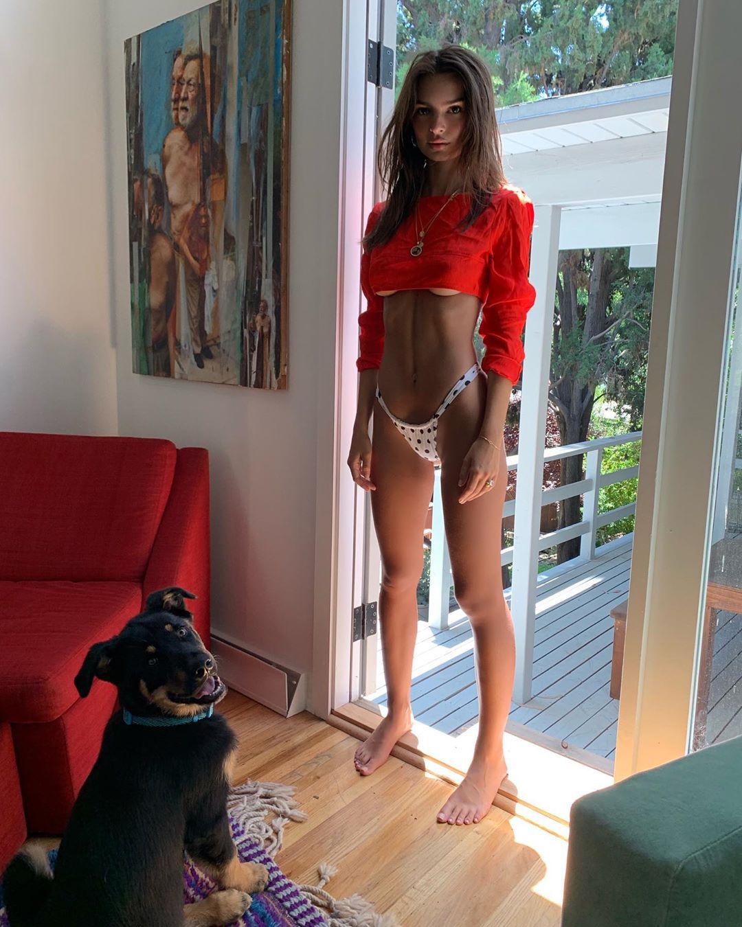 Emily Ratajkowski, calor e o cão que todos invejam