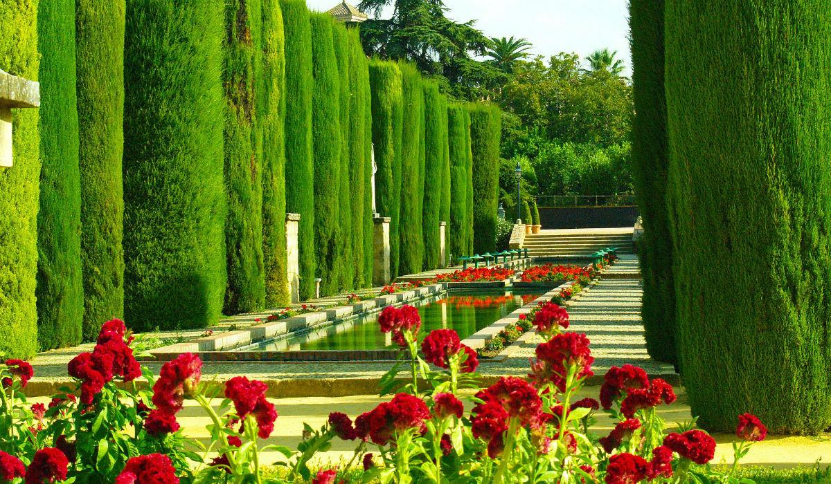 Córdoba, a bela cidade espanhola das flores e da arquitetura monumental