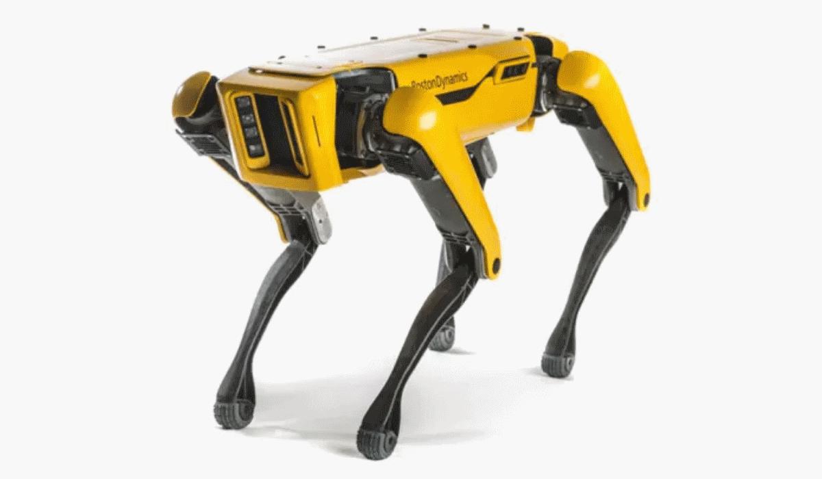 Spot, o cão que é um robot e que pode ser o seu melhor amigo no trabalho