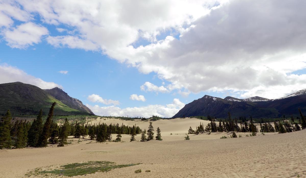 Carcross, o estranho deserto que se formou no Canadá