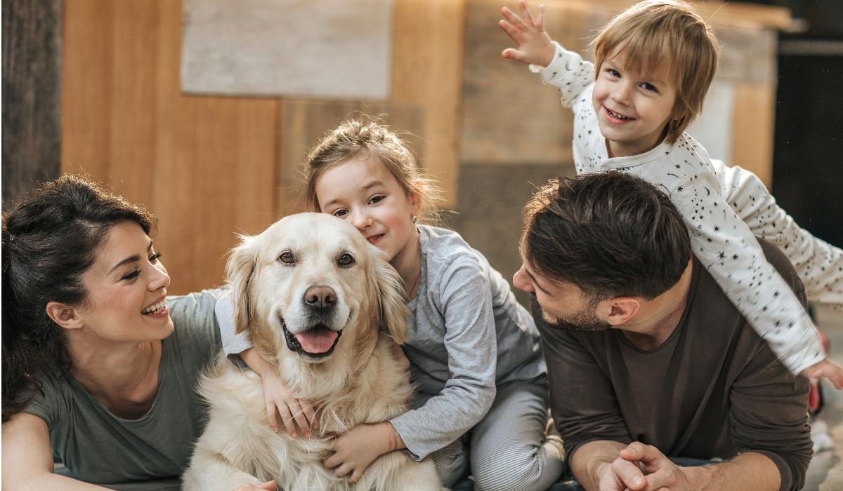 5 doenças perigosas que os animais domésticos podem transmitir