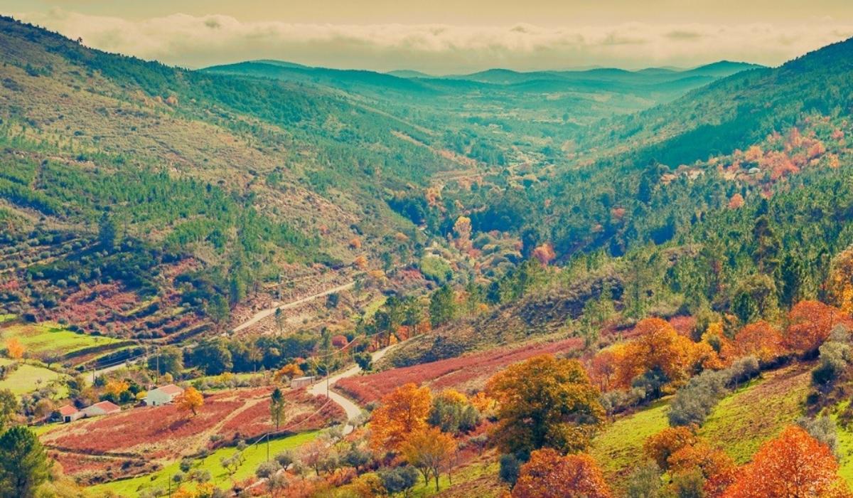 A exuberante Serra de São Mamede e muito mais para descobrir em Portalegre