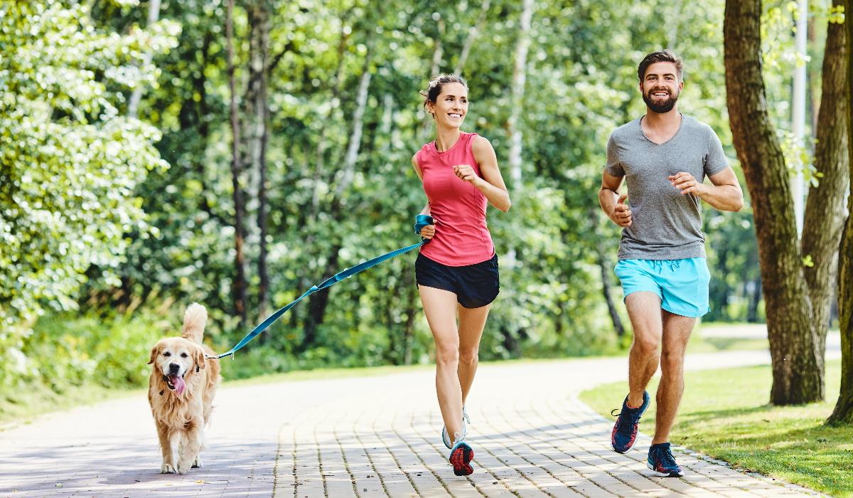 Saiba o motivo pelo qual é importante fazer exercício físico com o seu cão